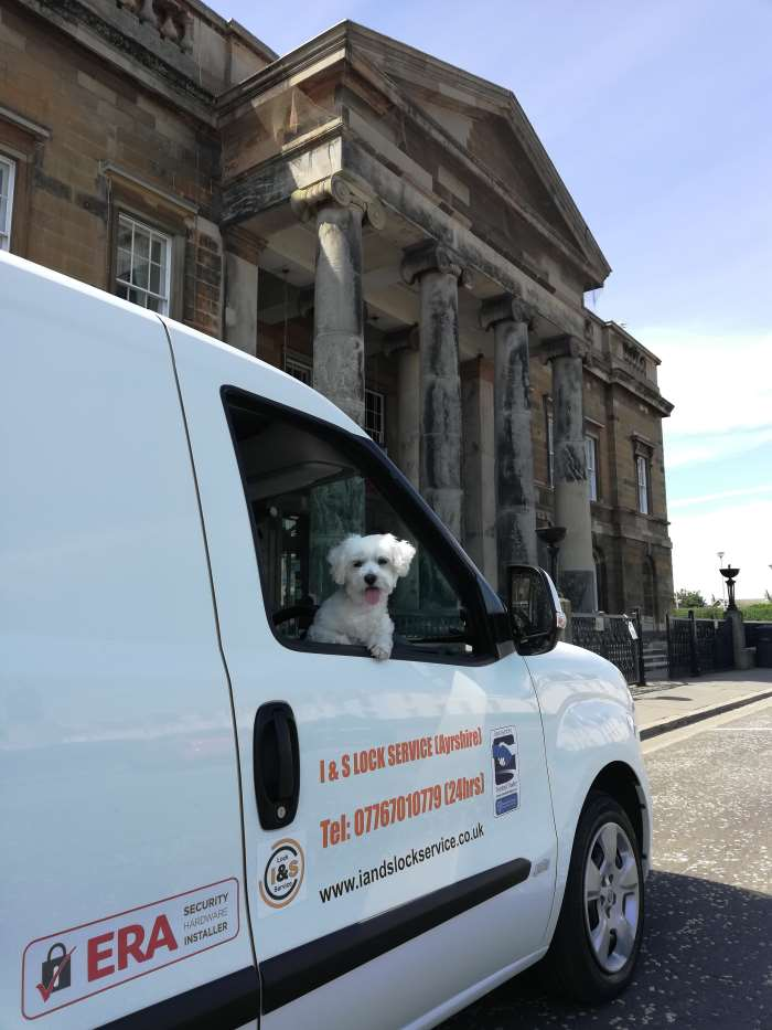 Iain's Locksmiths Ayrshire loved dog looking out of the van window Outside the County Buildings in Ayr